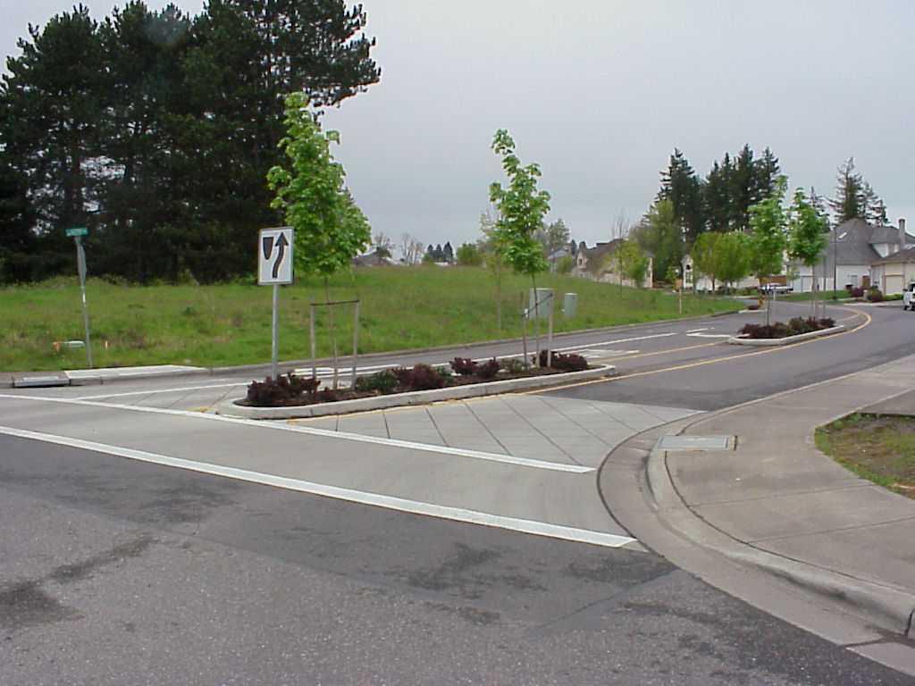Crosswalk1.jpg